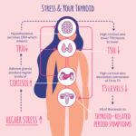 Stress and the Thyroid