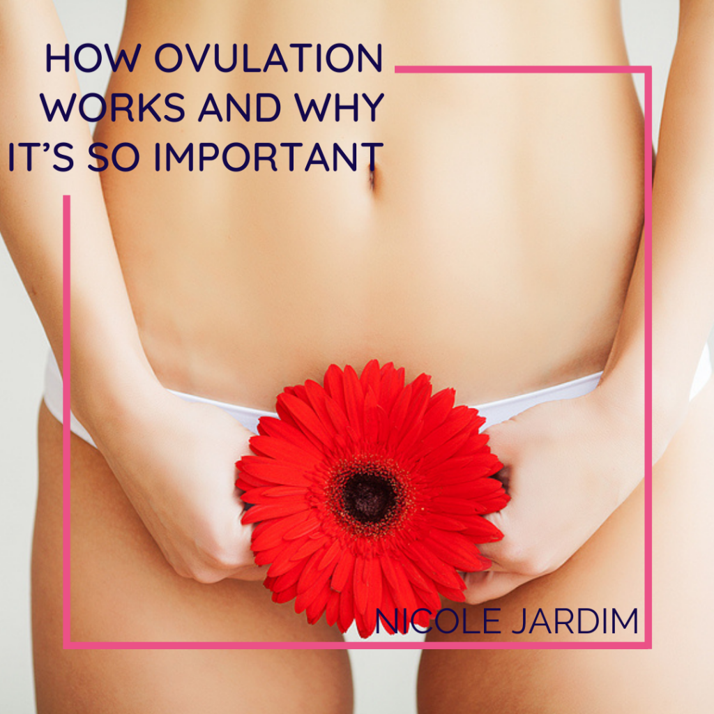 How Ovulation Works And Why It's So Important