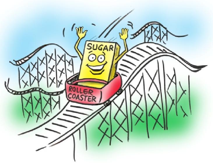 Blood-Sugar-Rollercoaster