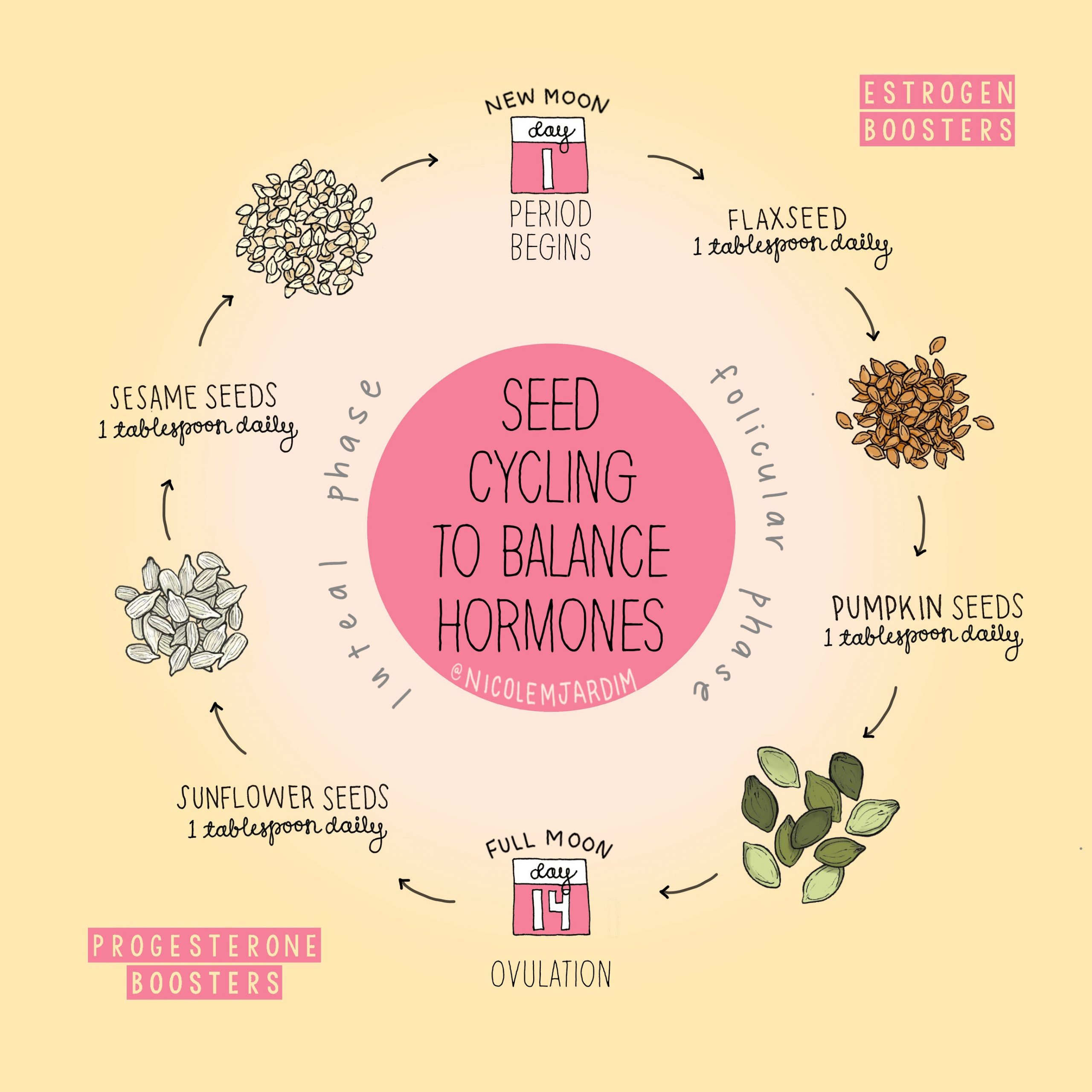 How to do seed cycling using flax, pumpkin, sesame and sunflower seeds