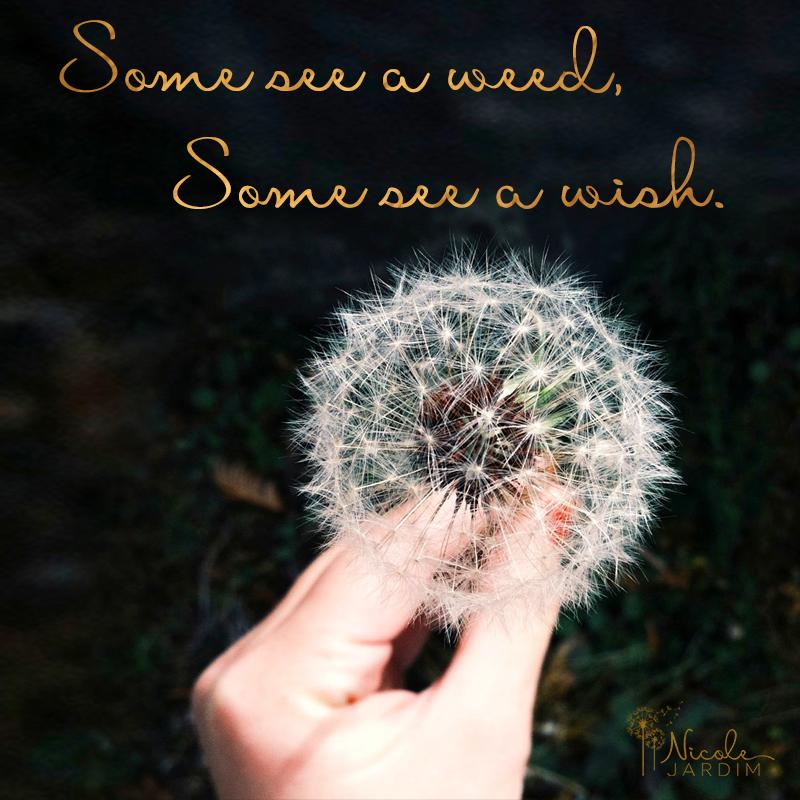SM-weed-wish