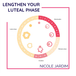 Lengthen your luteal phase